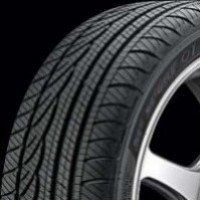 Dunlop SPT01AS 245 / 45 R17 95V